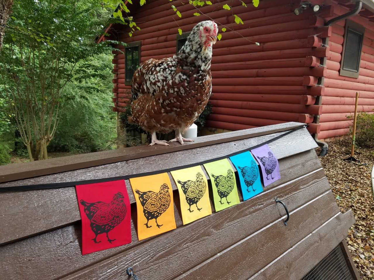 Rainbow Chicken Flags