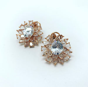 Born to Shine Earrings