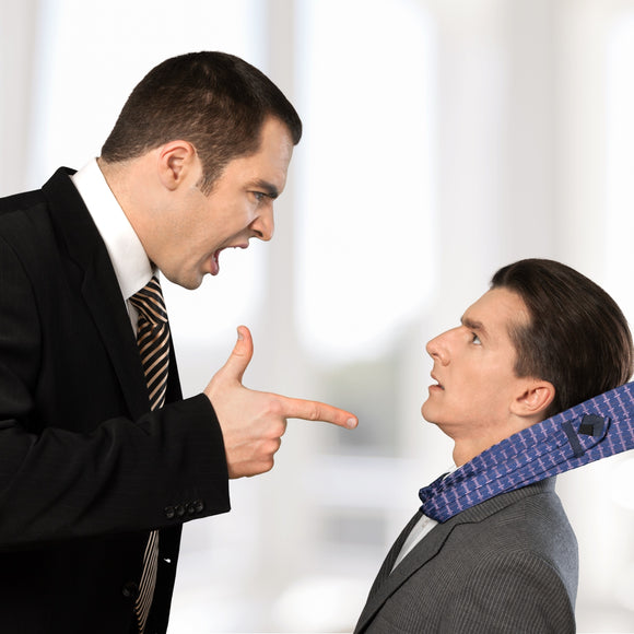 Bullying & Other Disruptive Behavior for Employees