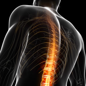 Back and Neck Injury Prevention