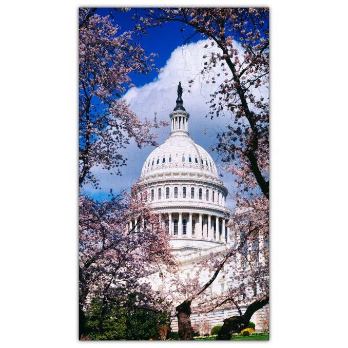US Capitol Cherry Blossom Puzzle (Birchwood)