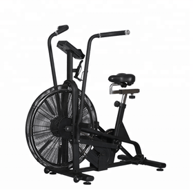 Assault Air Fan Bike - DirectHomeGym