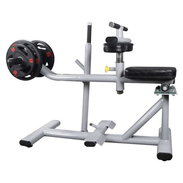 Seated Calf Raise Machine - DirectHomeGym
