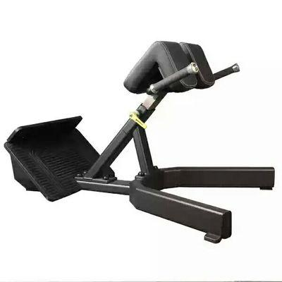 Roman Hyperextension Chair Bench - DirectHomeGym