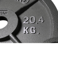 Competition Cast Iron Weight Plates (2.5lb - 45lb) - Olympic Size - DirectHomeGym