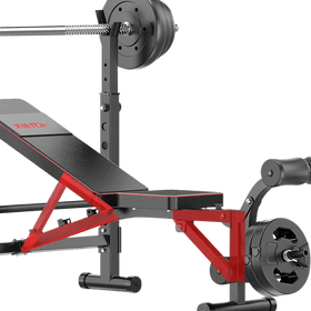 Weight Bench Rack with FID Bench and Leg Curl Attachment - DirectHomeGym