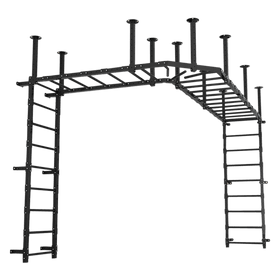 Custom Functional Training Equipment - Monkey Bar - DirectHomeGym