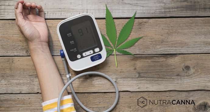 CBD Oil and High Blood Pressure: Here's What You Should Know
