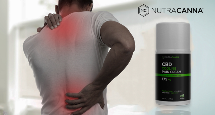 CBD Cream For Back Pain: Does It Work?