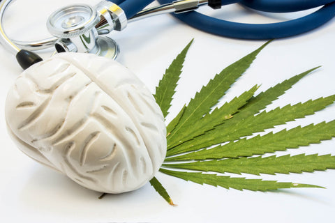 CBD for Brain Performance