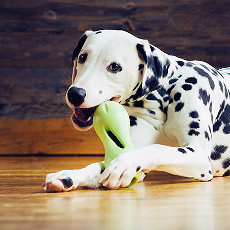 Why West Paw is Better Than an Oingo Boingo Song - Organic Pet Boutique