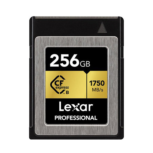 Lexar Professional 256GB CFexpress Type-B Memory Card_Durban