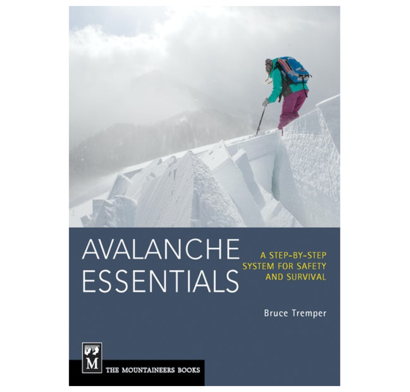Avalanche Essentials: A Step-By-Step System for Safety and Survival