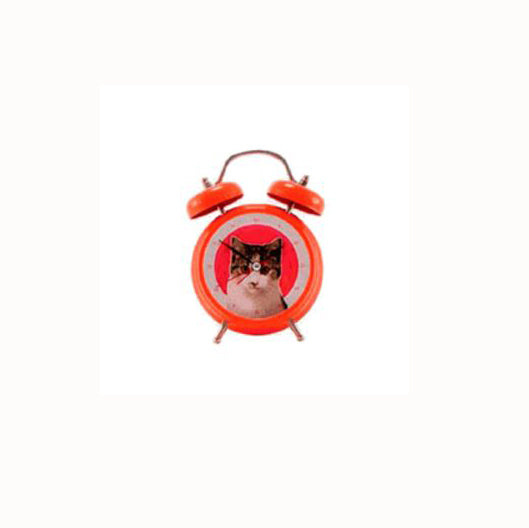 Present Time Cat Sound Alarm Clock