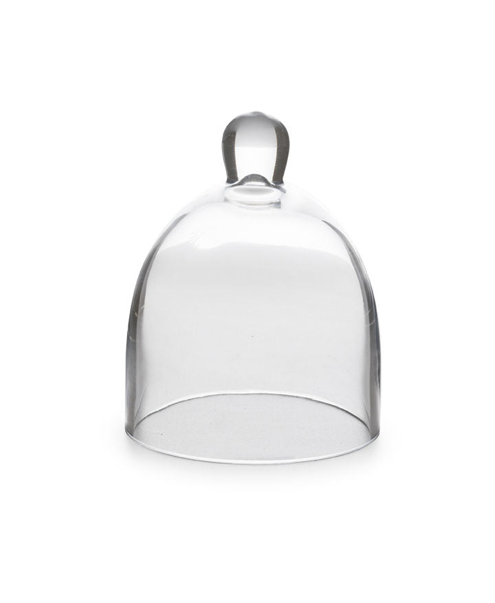 Rosanna Glass Dome Mini