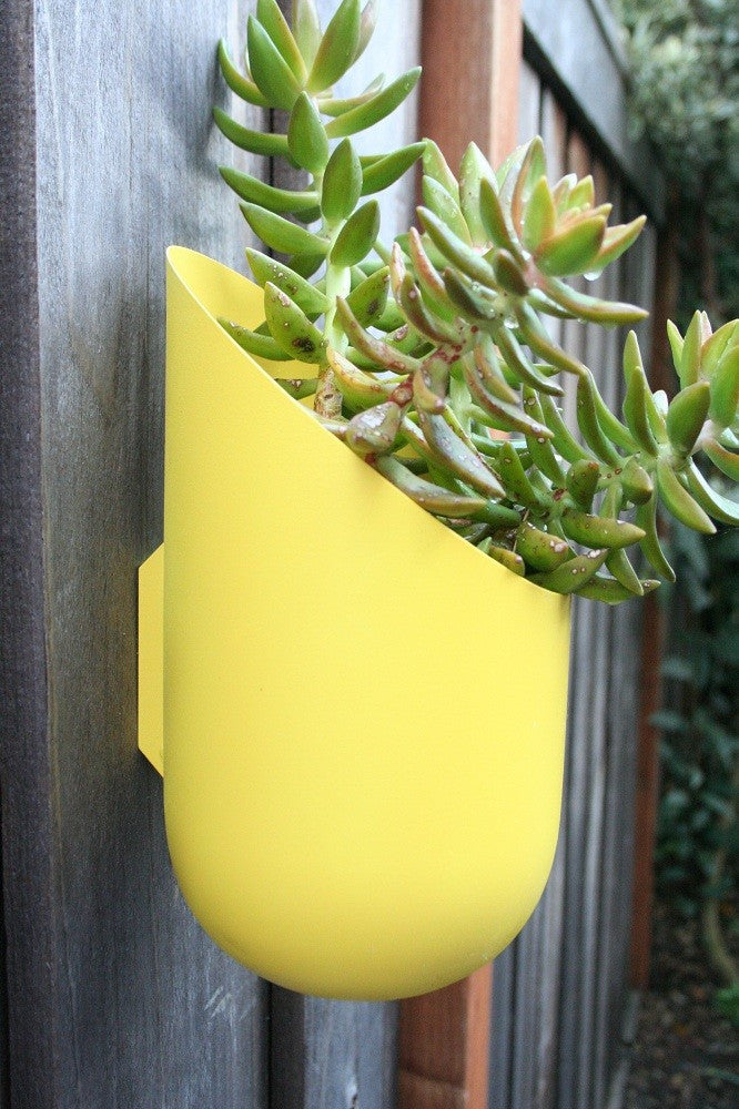 Wallter Wall Planter
