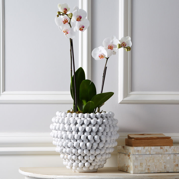 Tozai Home Pompom Decorative Vase/Planter