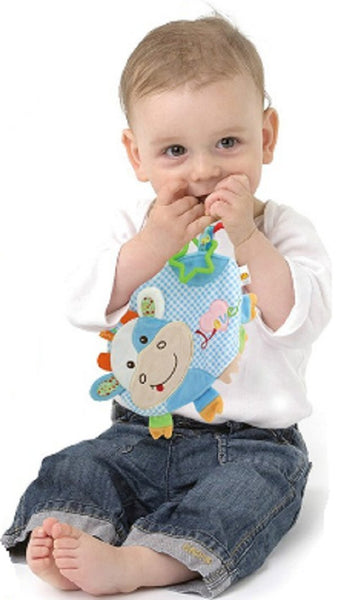 Pig Taggie Activity Blanket and Sensory Toy Baby Gifts for Newborns on Up