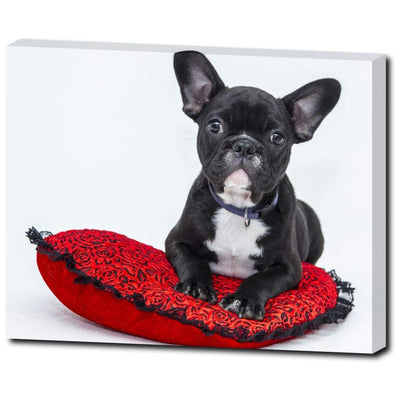 Art Is Life - Frenchie On Red Pillow - mhyplace