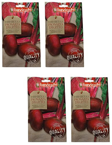 "Bavicchi: "" Barbabietola Paonazza d' Egitto "" Beetroot Egyptian Turnip Rooted seeds 15g - Pack of 4 [ Italian Import ]"