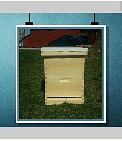10 frame (2 deep hive) with Frames bee hive Fully Assembled