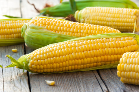 Adopting the Corn-free Diet