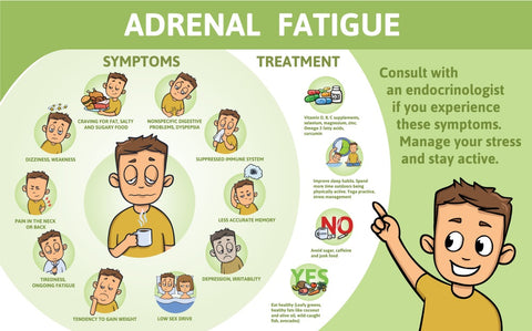 Strategies to Combat Adrenal Fatigue