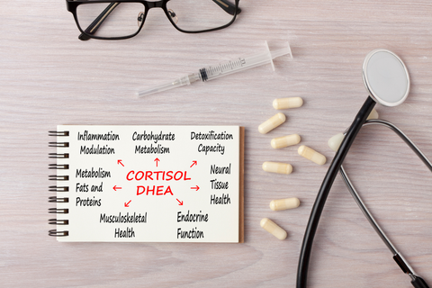 How to Test for Cortisol Levels?