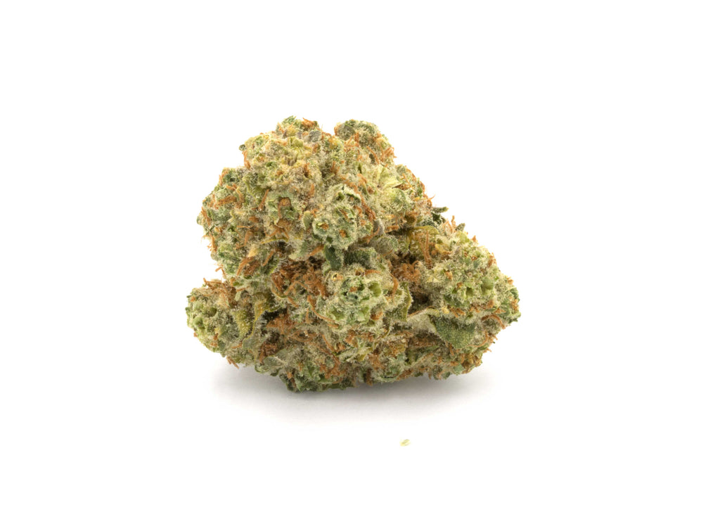 Queen Mother Goji Og Flower