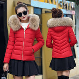 Winter Down Cotton Women's Jackets