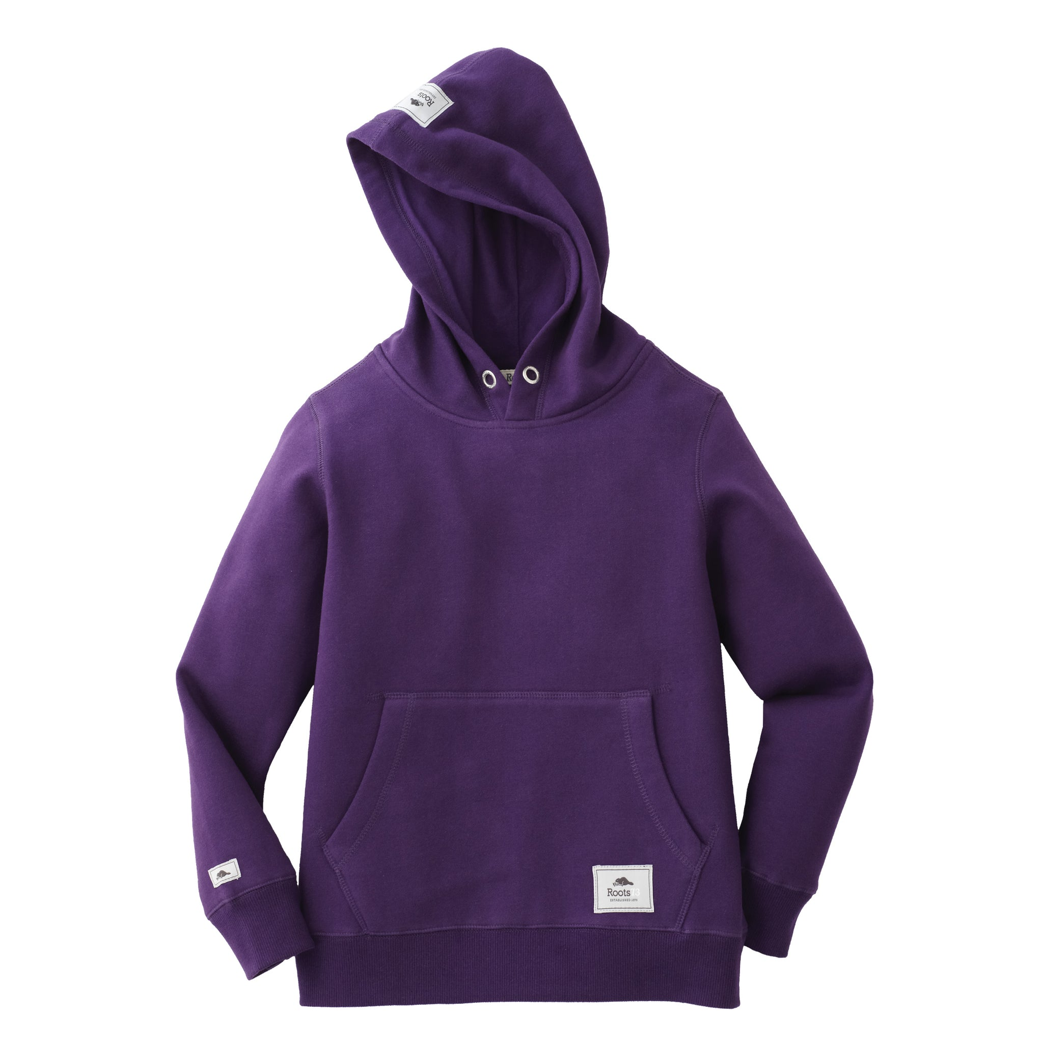 ROOTS73 YOUTH CRESTON FLEECE HOODY