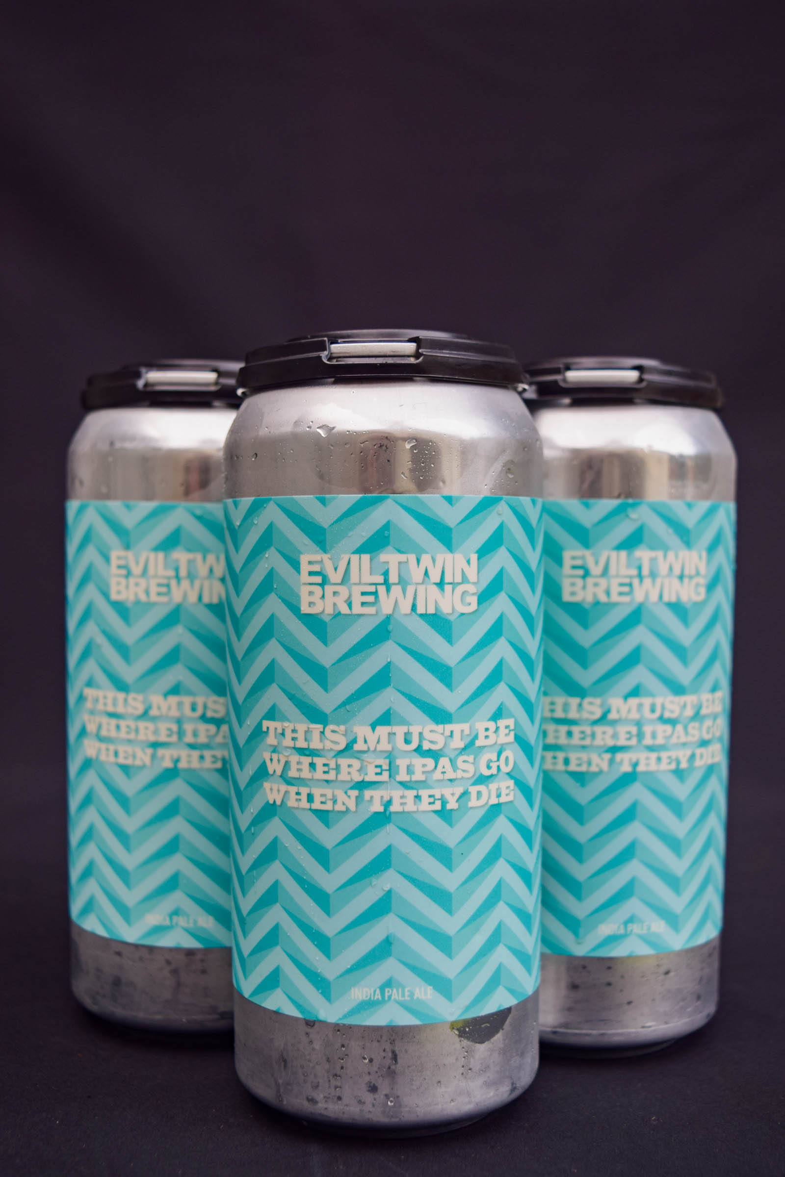 Buy Evil Twin This Must Be Where IPAs Go When They Die IPA Online