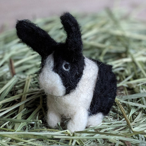 Dolly the Dutch Needle Felted Rabbit Kit - Everything Bunny Rabbit