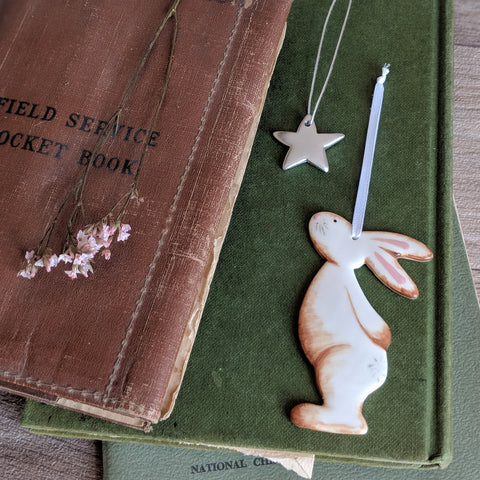 Bunny and Star Hanging Decoration - Brown