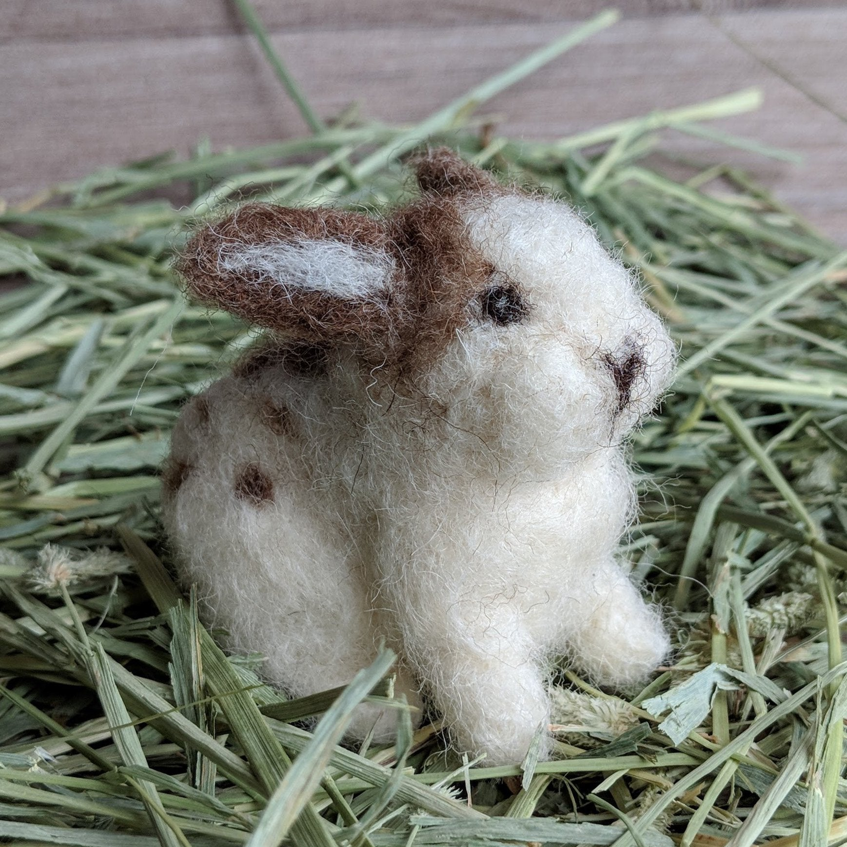Betsy the English Spot Needle Felted Rabbit Kit | Everything Bunny Rabbit - Everything Bunny Rabbit