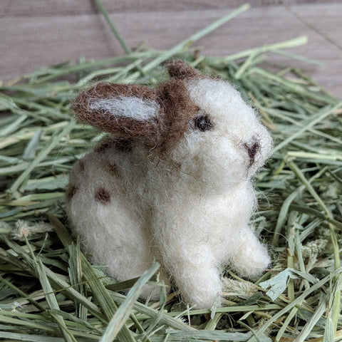 Betsy the English Spot Needle Felted Rabbit Kit - Everything Bunny Rabbit