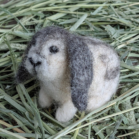Flora the Lop Needle Felted Rabbit Kit - Everything Bunny Rabbit