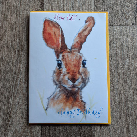 Rabbit Birthday Card - Everything Bunny Rabbit