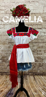 Nahua Mexican Blouse