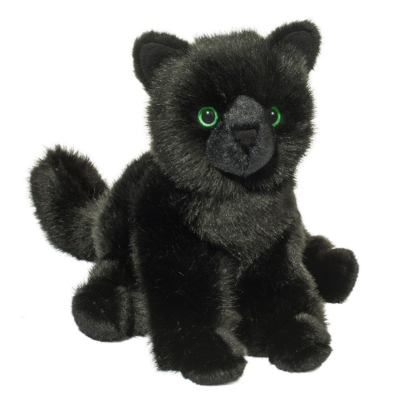 Douglas Salem The Black Cat