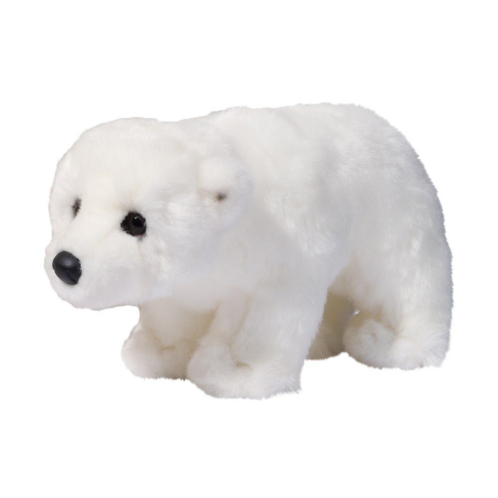 Douglas Aput The Polar Bear