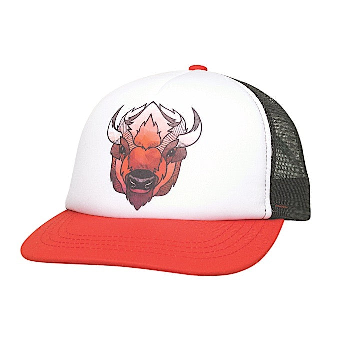 Ambler Kids Cap - Faces - Bison