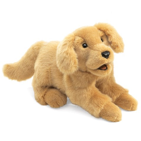 Puppet Golden Retriever Puppy