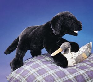 Puppet Black Lab Puppy