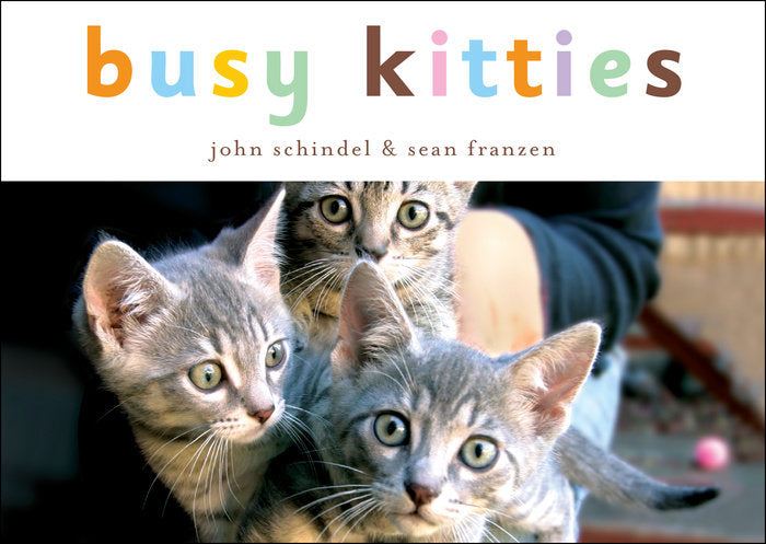 Book/Busy Kitties