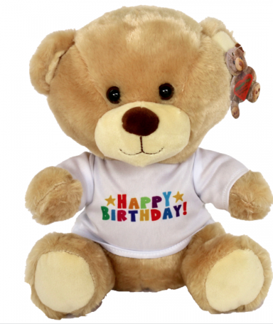 Huggable Birthday Bear