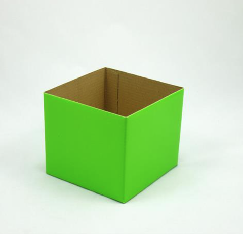 Mini Gloss Posy Box Lime Green