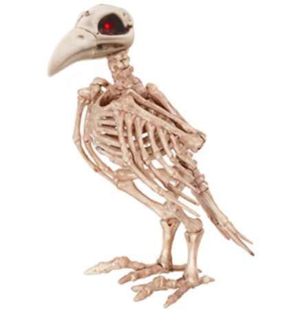 Crow Skeleton with Light Up Eyes