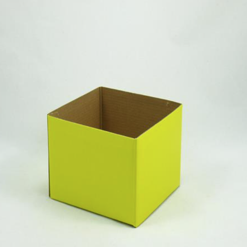Mini Gloss Posy Box Yellow
