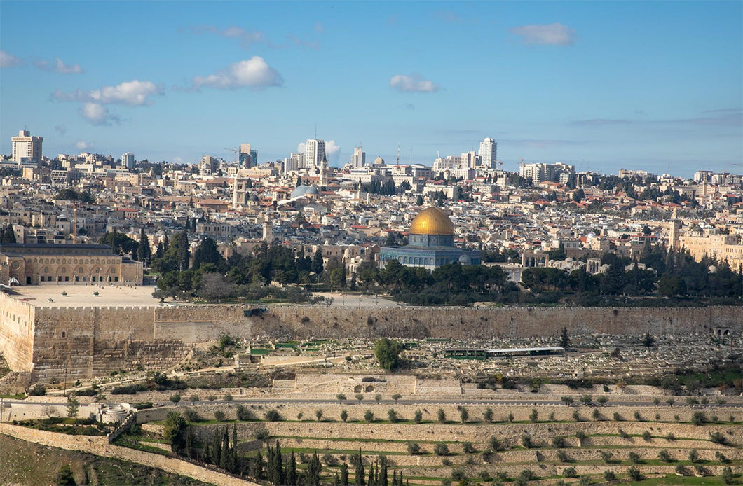 SOLD OUT - 11 Days life Changing Journey to the Holy Land from Chicago, IL - November 03-13, 2020 - Msgr. Schooler - Fr. Andrew Budzinski
